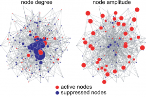 A complex network in which 75% of the nodes have been suppressed. (Left) Circle size indicates node degree. Hub nodes in the center are essential to maintaining network integrity. (Right) Circle size indicates oscillation amplitude. Peripheral low-degree nodes are highly important in maintaining network activity. Figures prepared using Pajek. c Gouhei Tanaka.