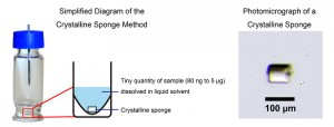 Figure 2: Summary of the crystalline sponge method.