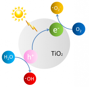 Figure 1: Production of active oxygen by photocatalysis.