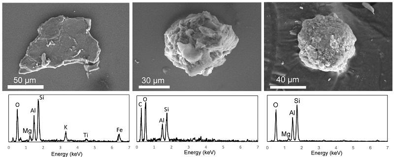 福島土壌中の放射性微粒子の特定と微粒子中の放射能分布の解明 | UTokyo Research