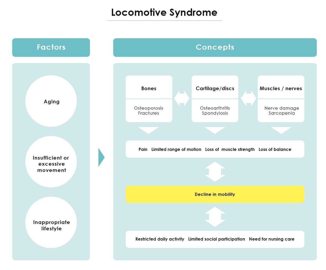 Figure 1. Conceptual overview of locomotive syndrome. Adapted from Locomotive syndrome. Locomotive syndrome pamphlet 2013, edited by Locomotive Challenge! Council, Japanese Orthopaedic Association, Tokyo, 2013.