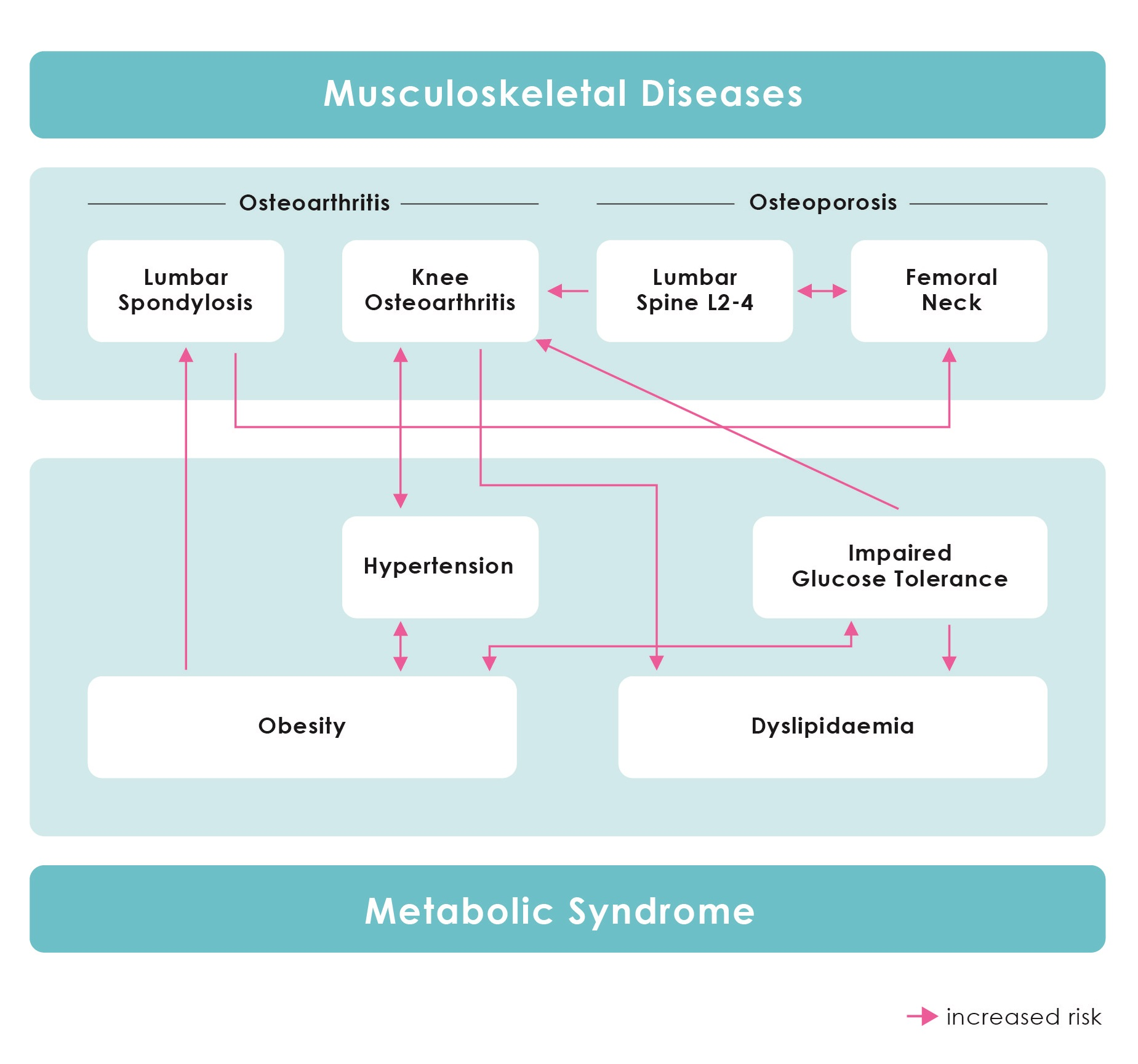 Figure 3. Conceptual diagram summarizing mutual associations among musculoskeletal diseases and metabolic syndrome components. Arrows linking two diseases and/or symptoms indicate the presence of the first condition increases the risk of the second occurring. Various factors are interrelated such that each may induce the symptoms of the other. (From Yoshimura N, et al: Mod Rheumatol. 2014 Nov 20:1-11. [Epub ahead of print]).