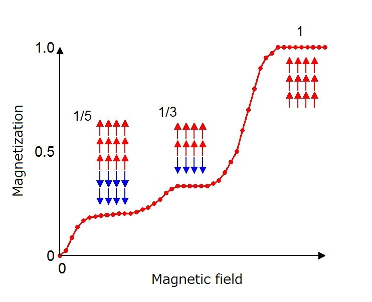 © 2015 Hiroki Wadati.Magnetization (vertical axis) of cobalt oxide shows plateau like behaviors as a function of the externally-applied magnetic field (horizontal axis). The researchers succeeded in determining the magnetic structures which create such plateaus. Red and blue arrows indicate spin direction.