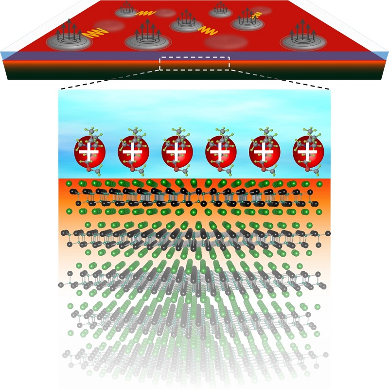 © 2015 Yu Saito.The bottom figure shows the electric-double-layer transistor based on ZrNCl in which an electric field is applied on the surface. Cations in the ionic liquid arrange on the surface on the ZrNCl, and then conduction electrons are induced and confined at the surface having thickness of 1-2 layers (1-2 nanometers), in which superconductivity is realized. The top figure shows the vortex motion under the magnetic fields in that system. Even at very low temperatures, the vortices can move under magnetic fields due to quantum fluctuation, leading to the generation of finite electrical resistance and thus preventing the emergence of the superconducting state.