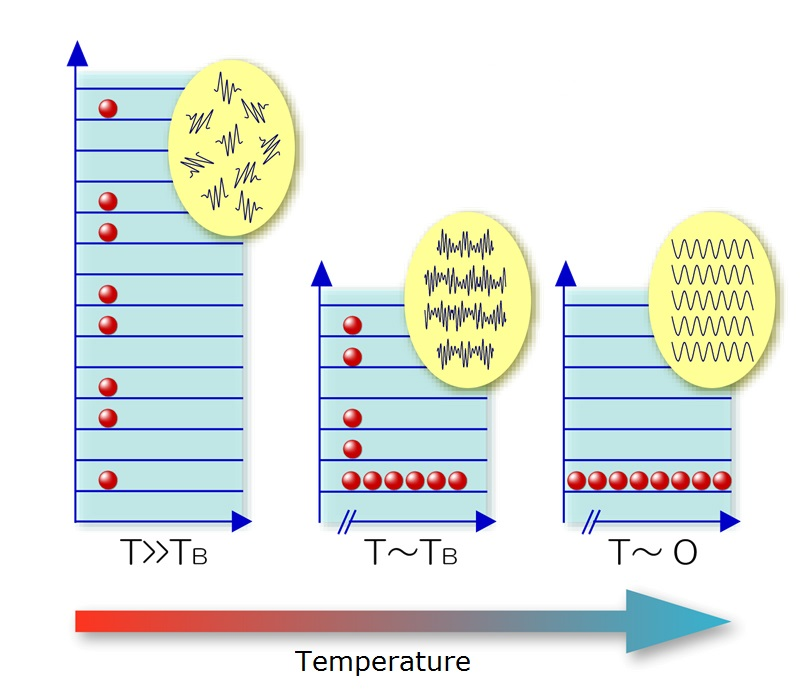 Figure 1: Conceptual diagram of Bose-Einstein condensation<br>As the temperature cools, particles begin to show wave-like properties. At ultra-low temperatures in the vicinity of absolute zero, particles behave as a single unit, and the characteristics of individual particle waves become synchronized and combine in a single large wave. This phenomenon is known as Bose-Einstein condensation, after Albert Einstein and his contemporary, the Indian physicist Satyendra Nath Bose.<br>© 2015 The University of Tokyo.