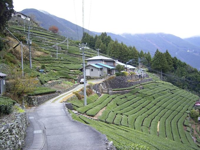 Satochi-satoyama2