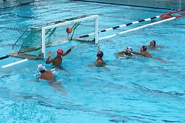 UTokyo's Water Polo Team Wins at the Seven Universities Athletic Meet for the Second Consecutive Year!