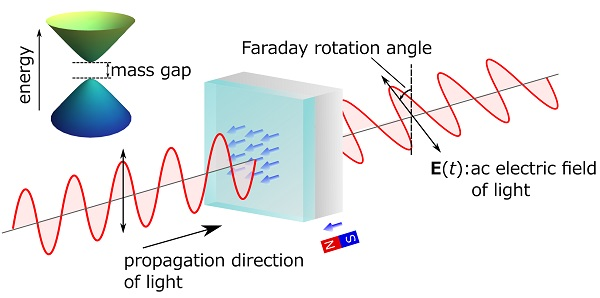 © 2016 Ken N. Okada.When magnetic properties are embedded in a topological insulator by adding magnetic elements (blue arrow), an energy gap (mass gap) is created in the electrons on the surface. Then the quantum anomalous Hall effect, in which the Hall resistance shows a quantized value without application of magnetic field, appears. At this point, the Faraday and Kerr effects for terahertz light, with energy well below the mass gap, show rotation angles as defined by the fine structure constant. The image illustrates the polarization rotation generated by the Faraday effect.