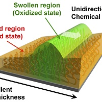 Team develops polymer surface with living system-like autono...
