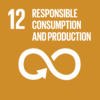 SDG12 Ensure sustainable consumption and production patterns
