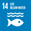 SDG14 Conserve and sustainably use the oceans, seas and marine resources for sustainable development