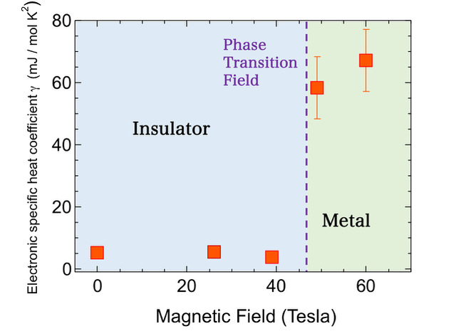 magnetic field dependence of electron specific heat coefficient γ