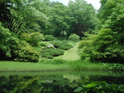 植物園 小石川 小石川植物園(植物園) TOKYOおでかけガイド