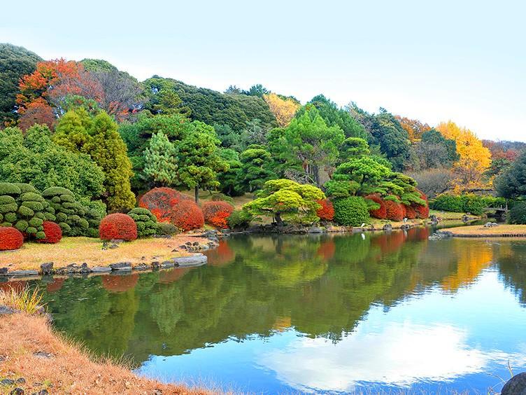 植物園 小石川 この公園について 小石川後楽園 公園へ行こう!