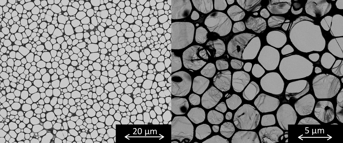 Two black and white transmission electron microscopy images. The left shows empty wells and the right shows thin films stretching over some of the wells.