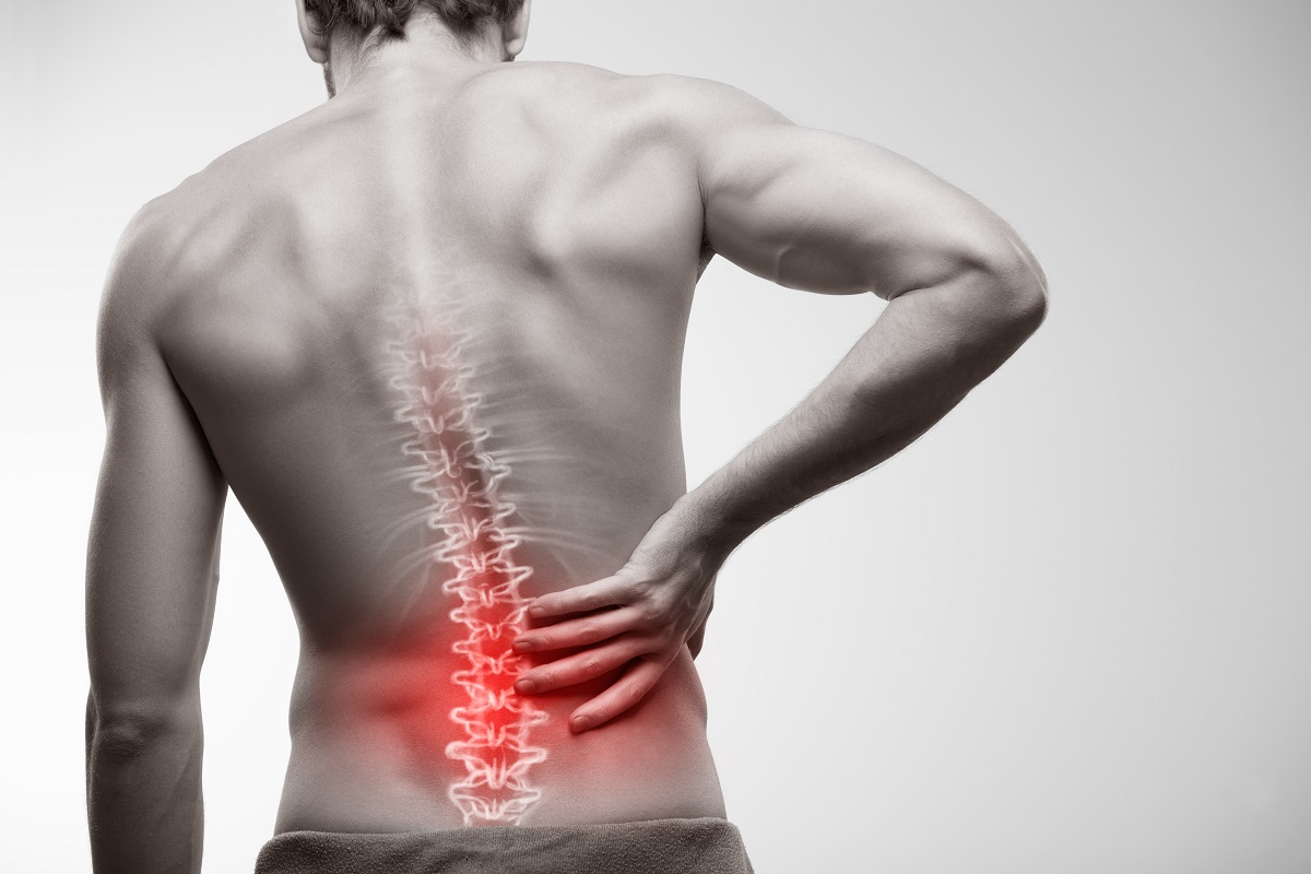 Facts That You Ought To Know About Lower Back Pain