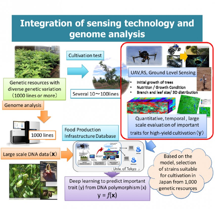 Development of Innovative Food Production Technology by Integration of Engineering and Agriculture
