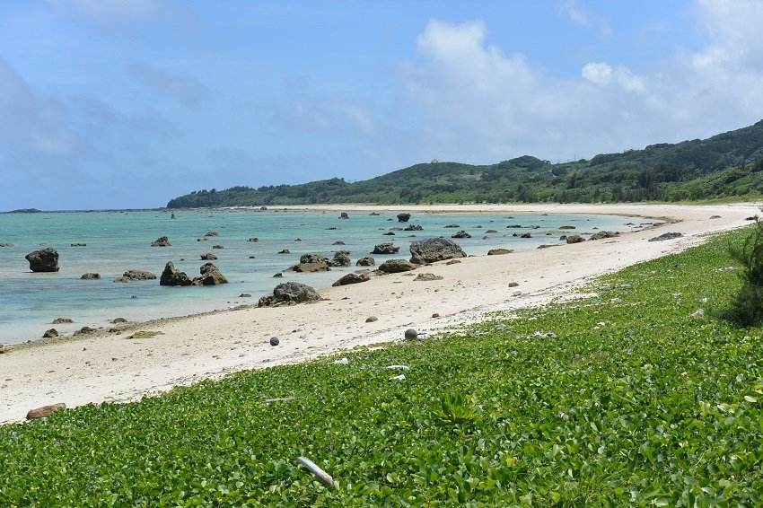 Massive coral boulders deposited by past large tsunamis at Ishigaki Island, Japan