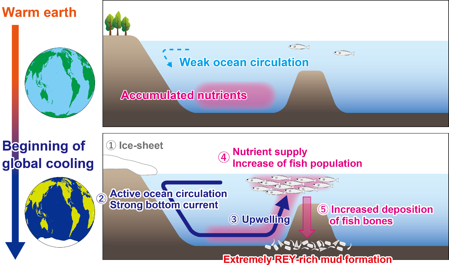 Two diagrams of the Earth (left), two diagrams of the ocean floor (right)