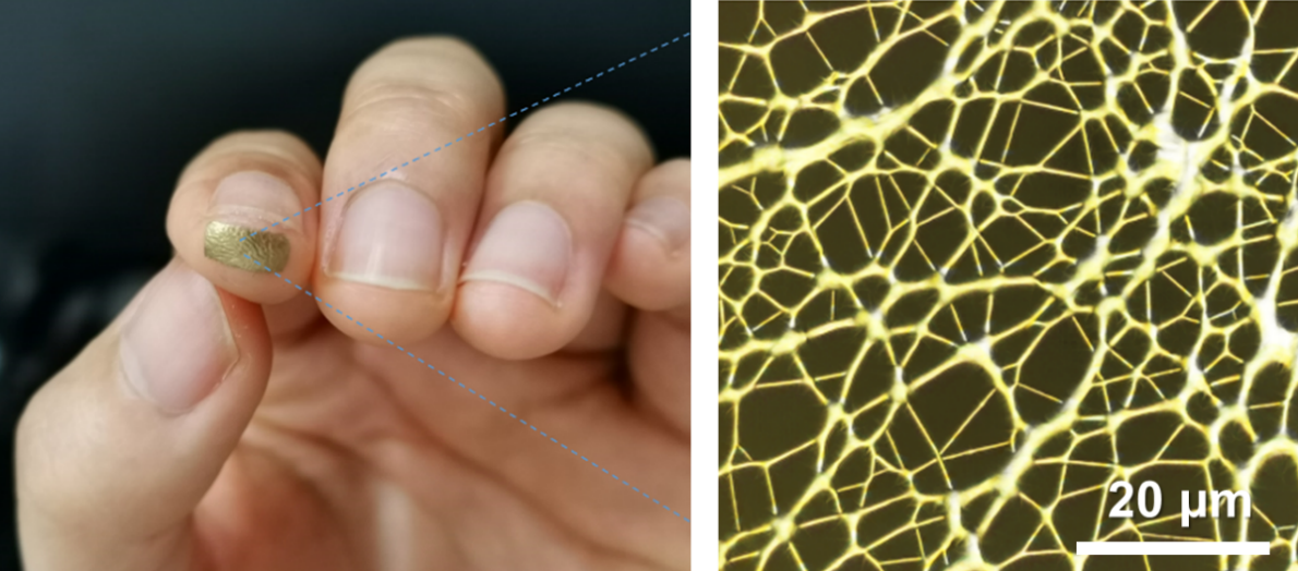 A small patch of gold on the end of a fingertip (left) a web of gold threads (right)