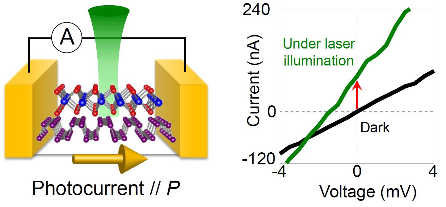 Fondo blanco.  A la izquierda hay dos cuadrados dorados con un enrejado que cuelga entre ellos.  A la derecha, un gráfico con una línea verde ascendente y una línea baja negra.